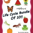 Life Cycle of a frog, butterfly, apple, sunflower, praying mantis, ant, salmon, watermelon, chicken, and pumpkin.  For each life cycle: - A life cy...