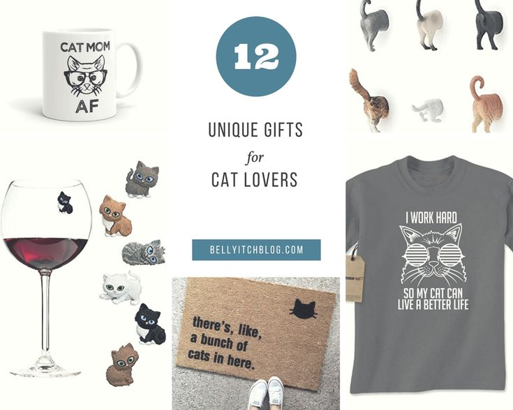 Need a last minute gift idea for that cat lover in your life? We've got 12 under $20!!