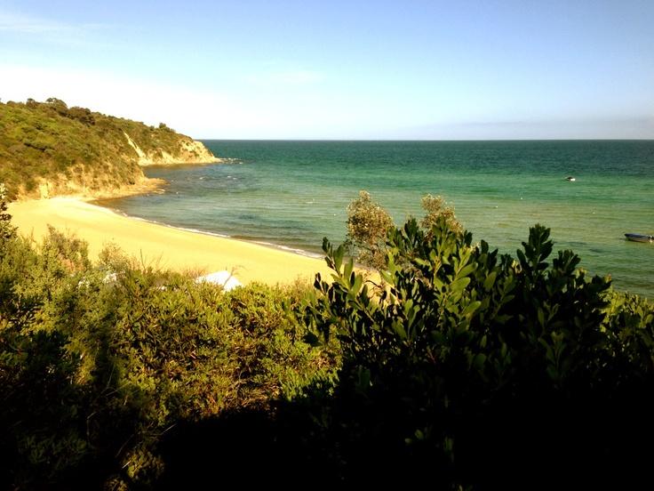 South beach mount Martha