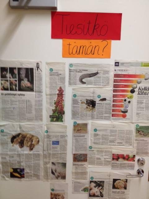 Jatkuvasti vaihtuvia, kiinnostavia lehtileikkeitä luokan seinälle.