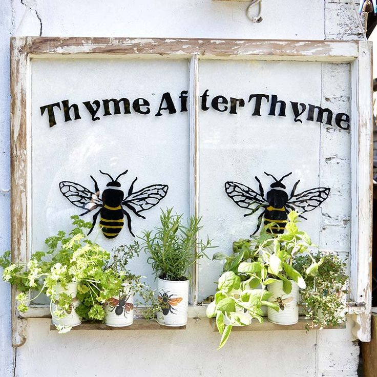 Turn an old window and some tin cans into a gorgeous herb garden for your backyard.     Not only does the upcycled window herb planter looks fantastic in my lit…