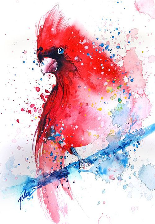 Cardinal Watercolor With Gouache Painting A3 Art Print