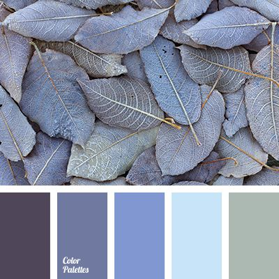 Color Palette #2488