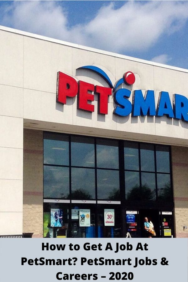 Tags how to get a job at petsmart how to get petsmart