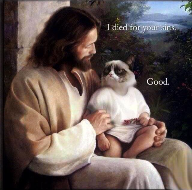 Jesus: I died for your sins. Grumpy cat: Good.