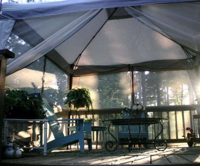 Screened in deck...Pretty awesome, isn't it?  Amazingly, this screened canopy was only $99 at Bi-Mart, a warehouse discount store.  So, for a reasonable expense, you get an instant screened-in porch.
