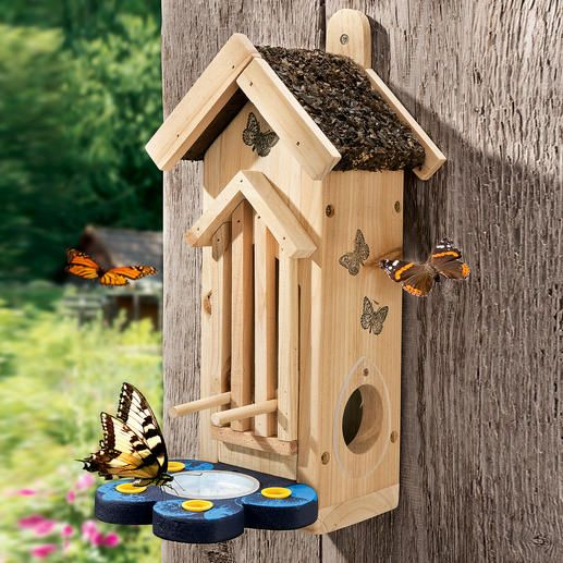 An attractive habitat where colourful butterflies can nest and rest.