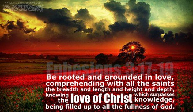 Ephesians 3:16-19, the riches of His grace, <3