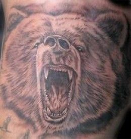 Bear Tattoos And Bear Tattoo Designs-Bear Tattoo Meanings And Ideas-Tattoo Pictures