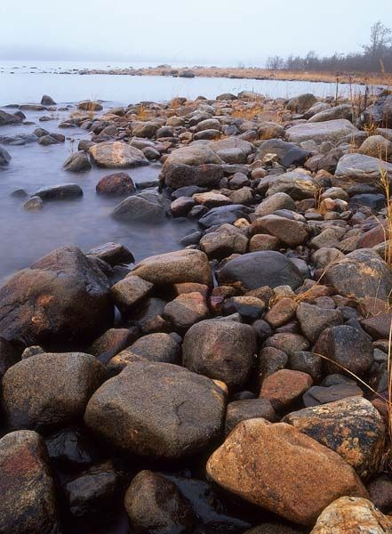 A typical beach caused by the uplift of land on the Ostnäs peninsula with boulders, grass, bushes and deciduous forest in the background. Ostrobothnia province of Western Finland. Pohjanmaa - photo: Jörgen Wiklund/N