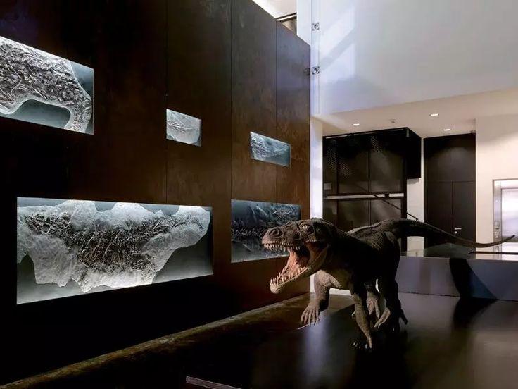 Musée des fossiles du Monte San Giorgio - Tessin Tourisme