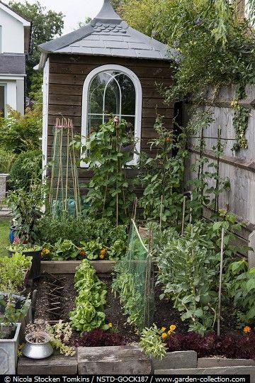 Potager (ornamental vegetable/kitchen garden)