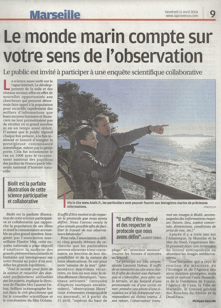 """Article BioLit """"La Provence"""" - 11/04/2014 - """"Le monde marin compte sur votre sens de l'observation"""""""