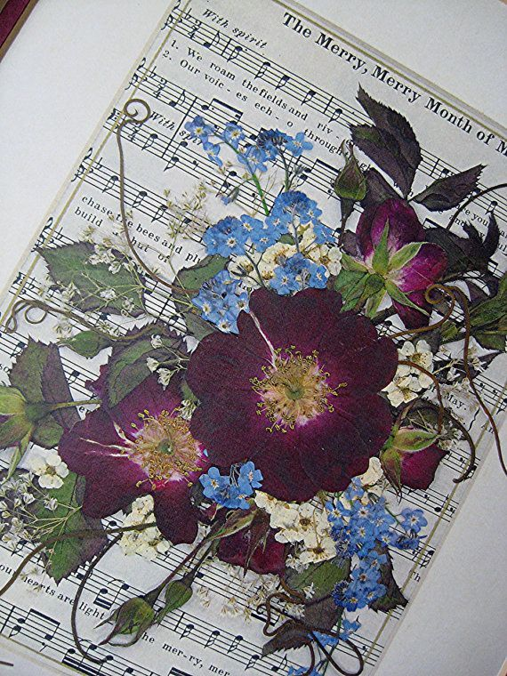 Hey, I found this really awesome Etsy listing at http://www.etsy.com/listing/153108591/music-art-wall-art-flowers-sheet-music