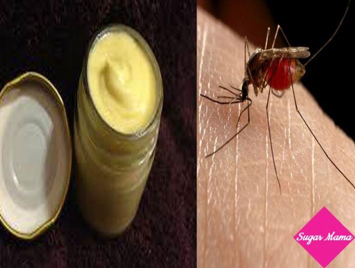 Φτιάξε την δική σου εντομοαπωθητική κρέμα