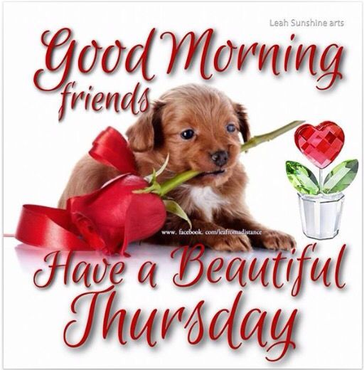 Image result for happy thursday friend