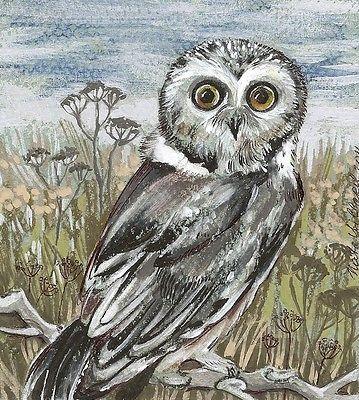 OWL original...