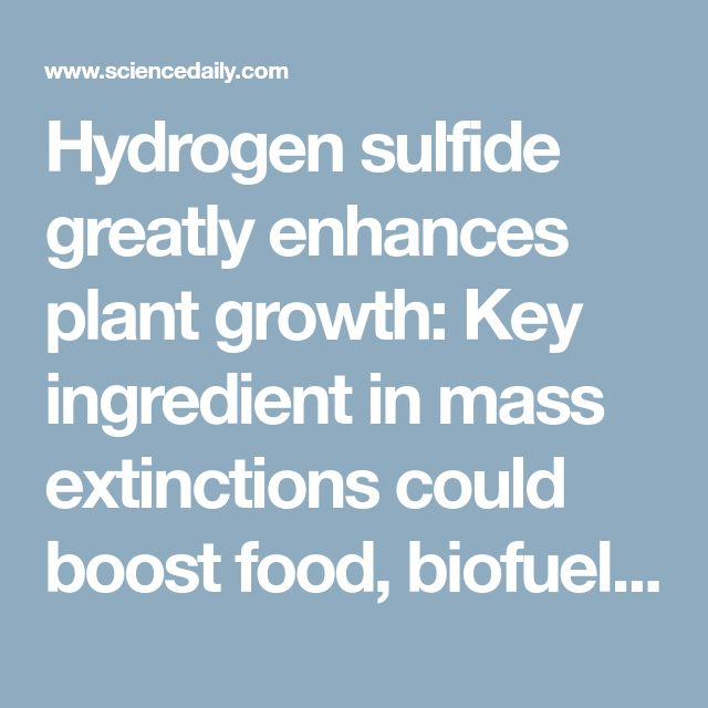Hydrogen sulfide greatly enhances plant growth: Key ingredient in mass extinctions could boost food, biofuel production -- ScienceDaily