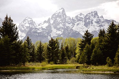 M s de 25 ideas incre bles sobre wyoming camping en for Jackson hole wyoming honeymoon cabins