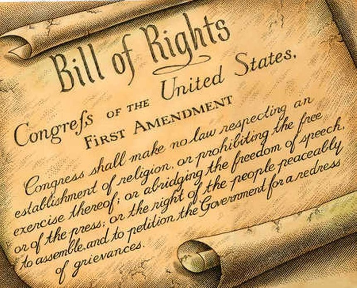 29 best Bill of Rights images on Pinterest Bill of rights - importance of petition