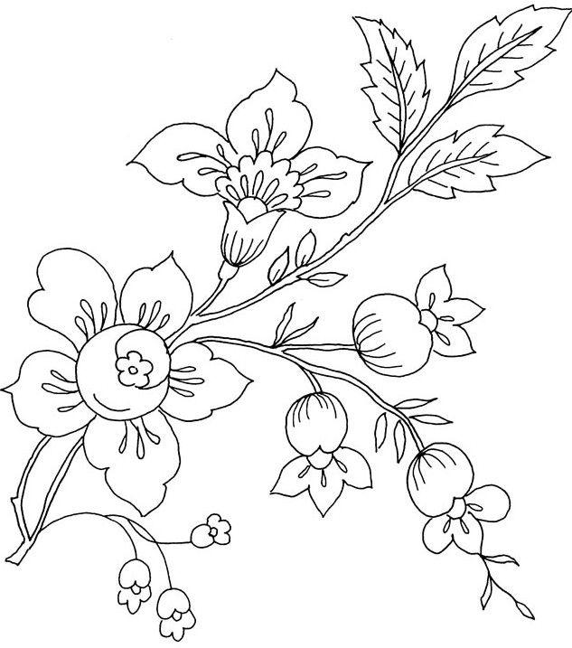 Gambar Bunga Melati Yang Belum Diwarnai Gambar Mewarnai Bunga Matahari Mawar Tulip Melati Gambar Mewarnai Mewarnai Gambar Bunga M Di 2020 Sketsa Bunga Bunga Sakura