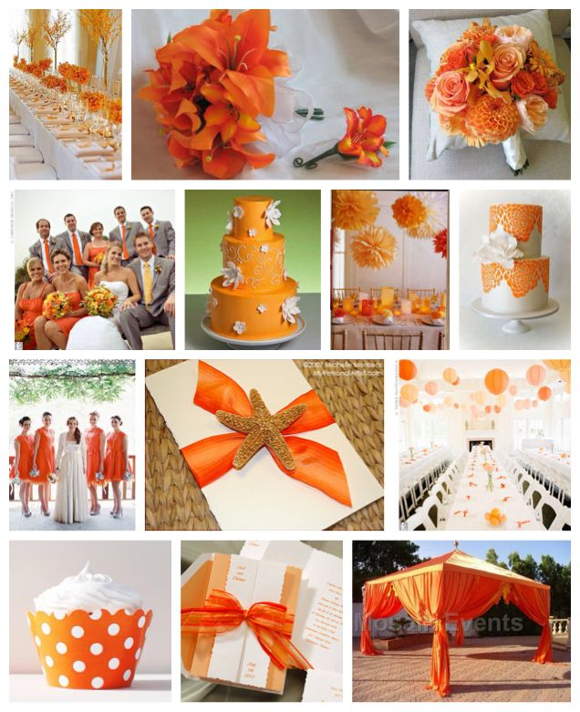 Orange wedding.....love, love, love!!