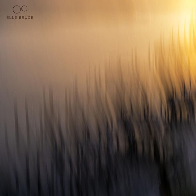 FOUND BEAUTY TODAY... in this #abstract #landscape #photo I made nearly a year ago. Grateful to have discovered so many talented  #ICM (intentional camera movement) artists here on Instagram. You inspire! For more of my thoughts on creating original work check out the latest post at ellebruce.com. Link in bio. #foundbeautytoday #inspiration #notimitation #beoriginal #Florida #dawn