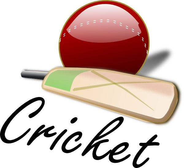 weekend corporate cricket matches in Gurgaon bit.ly/2akbxVO