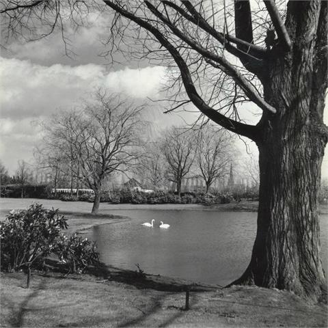De vijver in het Burgemeester van Sonsbeeckpark rond 1950. Op de achtergrond zwembad het Ei. Links naast de boom de kerktoren van de OLV Hemelvaart kerk die in 1967 is afgebroken.