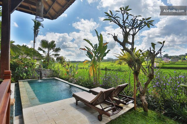 1082 POOL AREA AT BALI UBUD VILLA, OVERLOOKING RICE FIELDS, TAKEN FROM OUTDOOR LIVING AREA