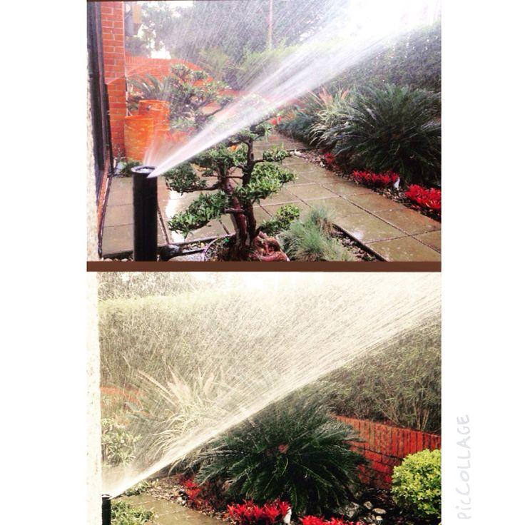 Uso racional del agua, cuidemos la naturaleza