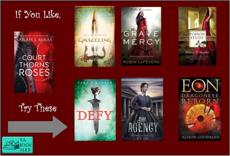 If you Loved A Court of Thorns and Roses, check out these other books