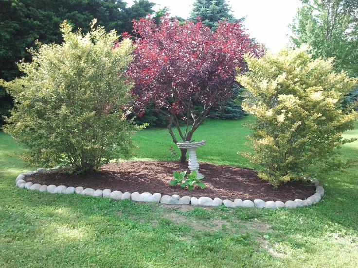 Simple corner landscaping to mark off property line for Backyard landscaping plants