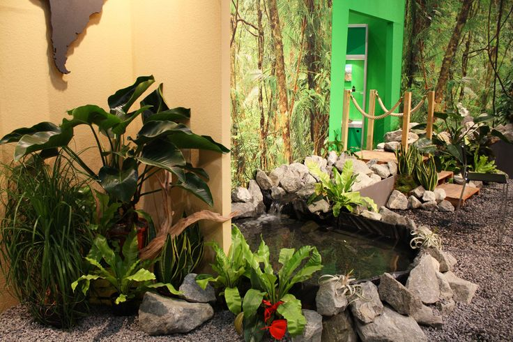 tropical feeling, Mineralienmesse Hamburg, tropical plants, decorations theme Anden, fair