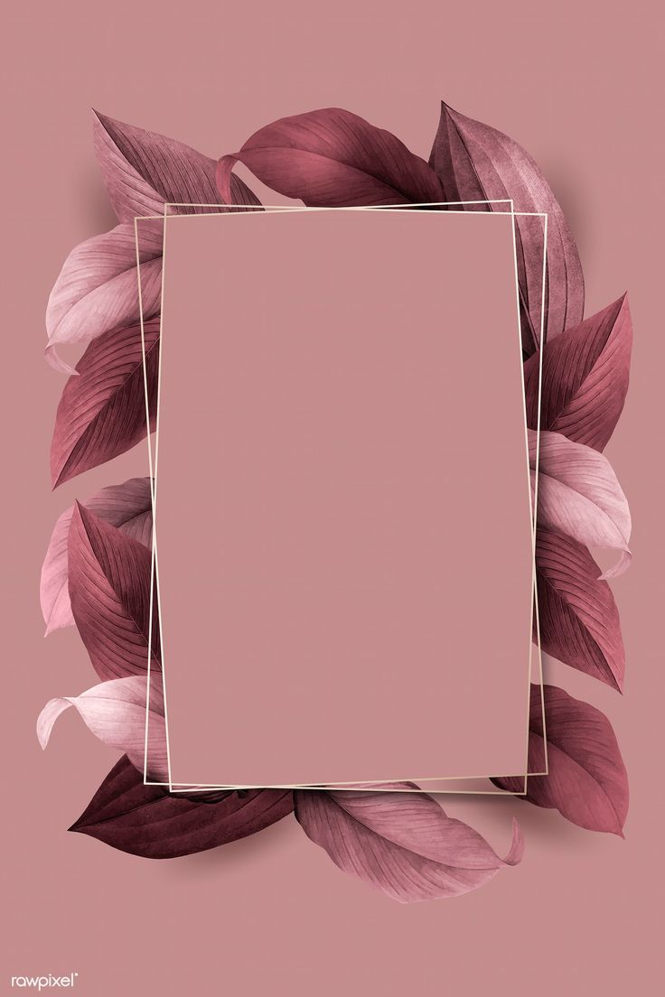 Download premium illustration of Rectangle foliage frame on pink
