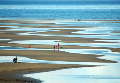 """Parksville beach at low tide."