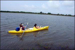 Camp near corpus christi in mustang island state park and for Kayak fishing galveston