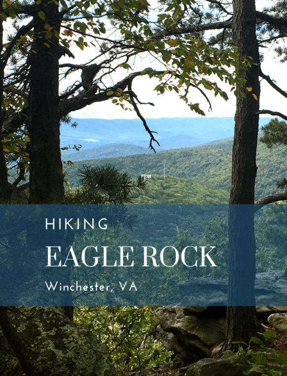 Hiking the Tuscarora Trail to the Eagle Rock Overlook in western VA • A great day hike for families. The full trail challenges backpackers.