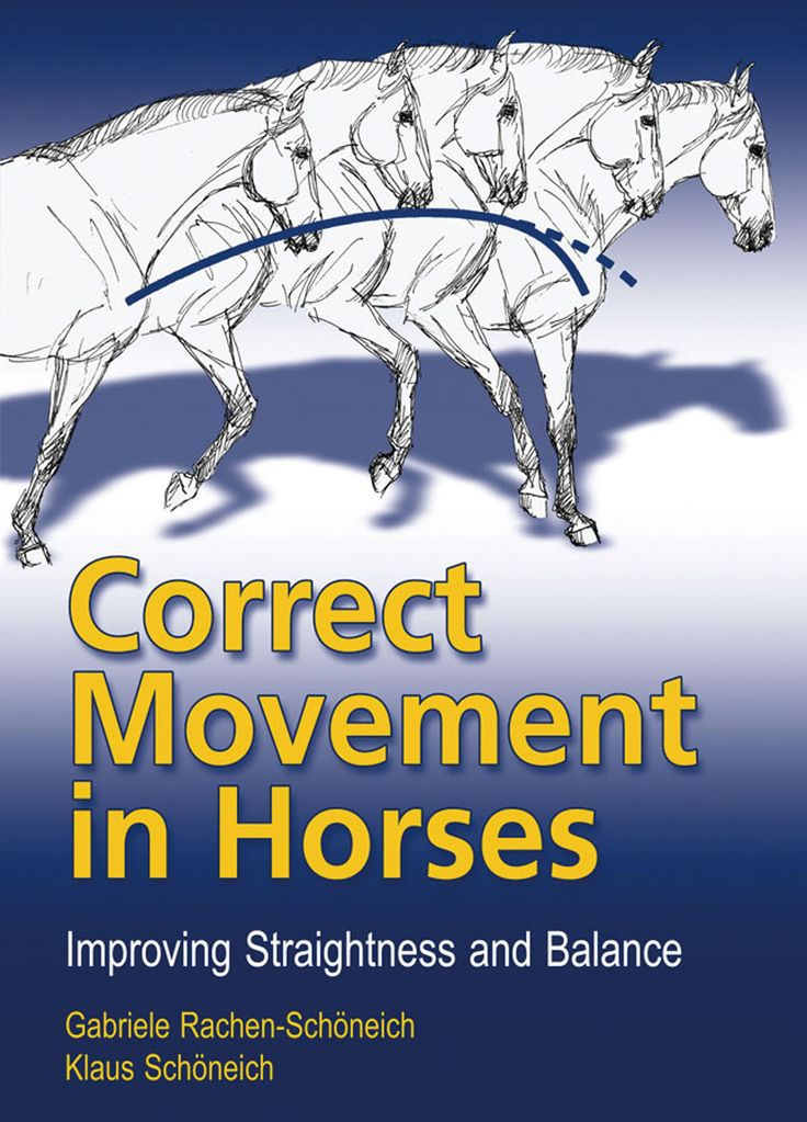 Correct Movement in Horses by Klaus Schoneich and Gabriele Rachen-Schoneich | Quiller Publishing. The authors attribute 95% of all problems in the horse's way of going to it's natural, intrinsic crookedness and to the fact that in training, importance is attached to its straightness. Thanks to a system of straightness training, the horse's basic way of going can be corrected in a relatively short time. #horse #training #riding #movement