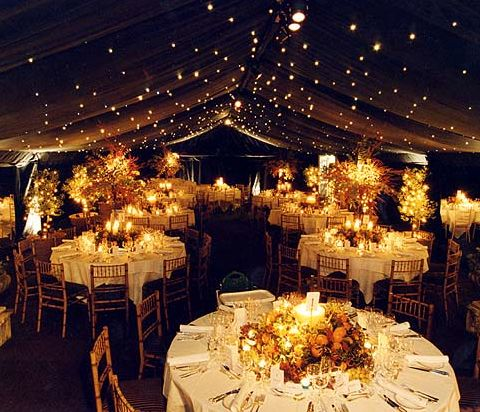 Nighttime, outdoor wedding reception w/ lights (bonus if they twinkle..) Could also work inside to create an outdoor effect!