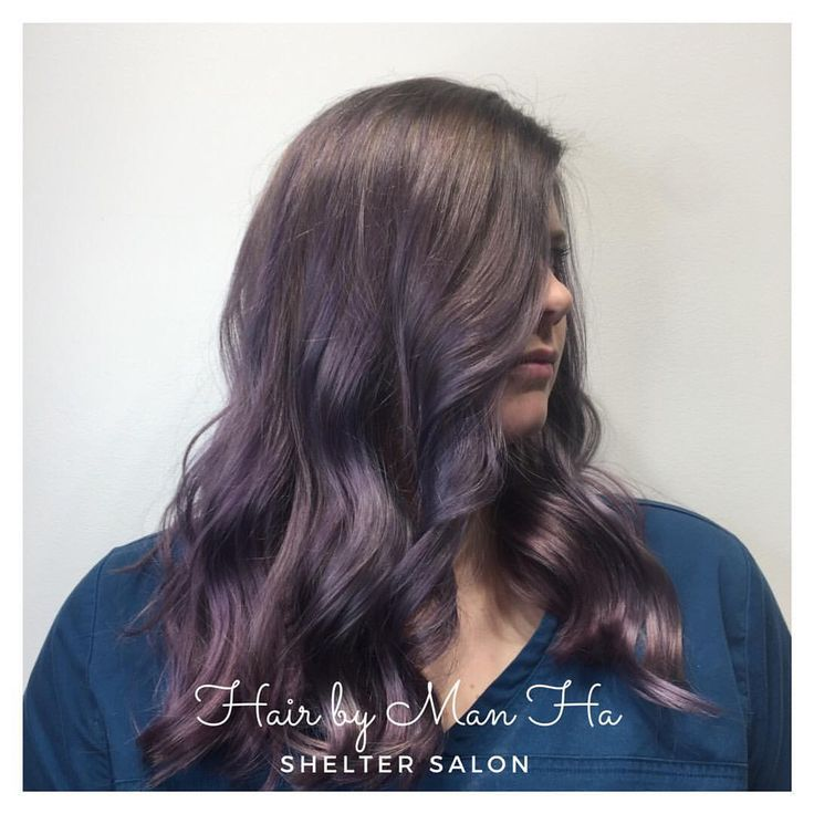 Purple/grey color and cut by Man Ha | Shelter Salon | Wichita, KS