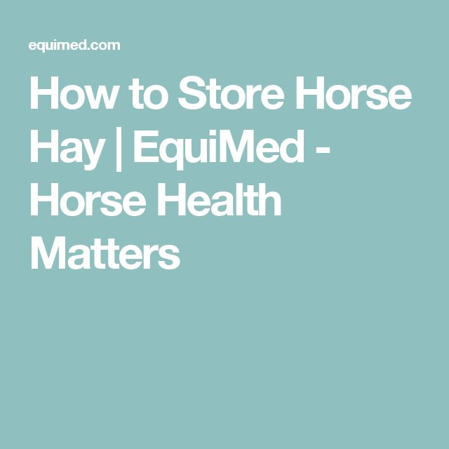 How to Store Horse Hay | EquiMed - Horse Health Matters