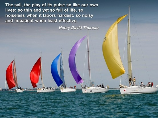 Sailing Picture Quotes: 51 Best Images About Sailing On Pinterest