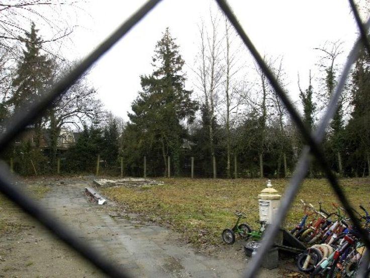 Loenen op de Veluwe - Het Hummelhoekje → tussen het hek en de bomenrij liep één van de sprengen. Helaas heb ik daar maar één of twee keer met mijn laarsjes doorheen durfen lopen (in de lengterichting).