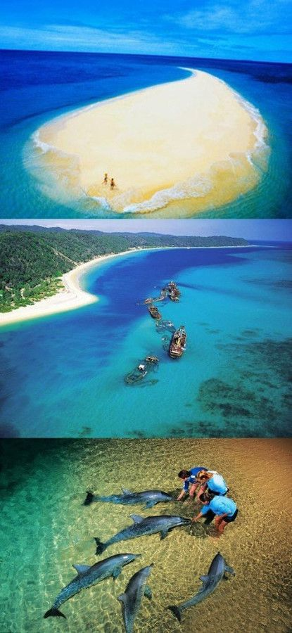 Moreton Island, Queensland, is the third largest sand island in the world. Feed dolphins at dusk; shipwrecks; some of the best snorkeling in Australia