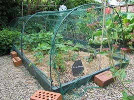 Using Organic Mulches in the Vegetable Garden, great new article out today from growveg.com.