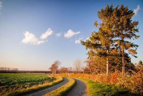 Haus kirchlicher Dienste der Evangelisch-lutherischen Landeskirche Hannovers – Kirche auf dem Land, ländlicher Raum und Landwirtschaft