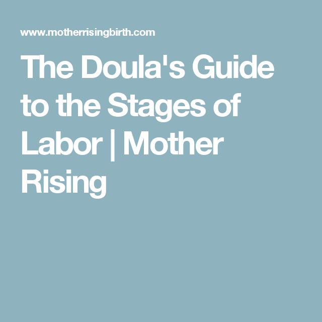 stages of labor Managers need to understand the stages of labor that a nanny will labor through before they can be successful in the barn there are generally three stages of labor that may vary in length and intensity, depending on the doe and doe's age.