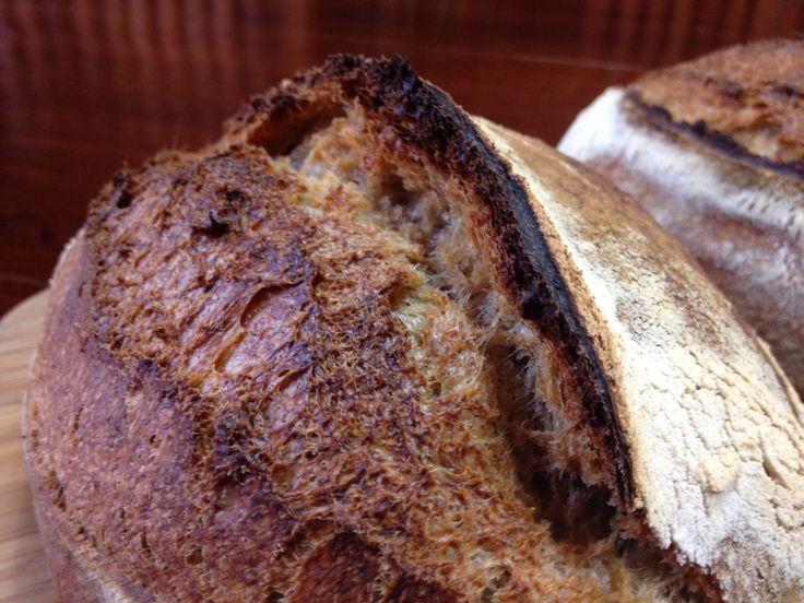 #Raimugido crust close-up.