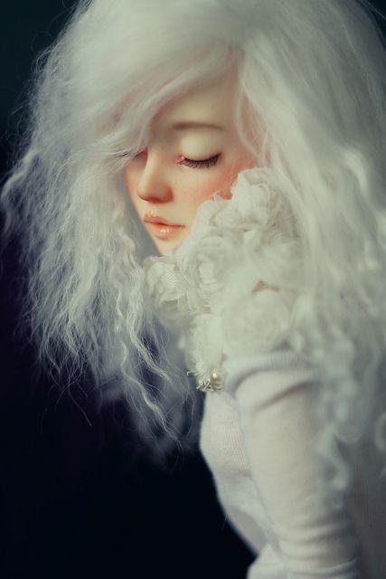 Lotos | Flickr - Photo Sharing!